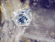 Apatite inclusions in quartz