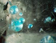 """Gilalite inclusions in quartz (""""medusa quartz"""")"""