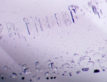 Two-phase inclusions in fluorite