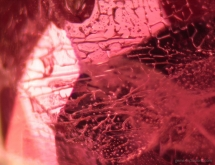 Vitreous inclusions in heat-treated ruby