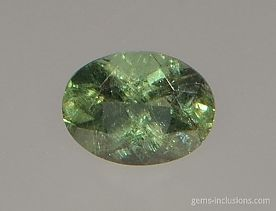 two-phase-inclusions-apatite-121.jpg